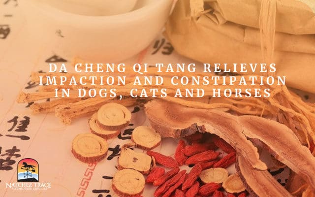 Da Cheng Qi Tang Relieves Impaction and Constipation in Dogs, Cats and Horses